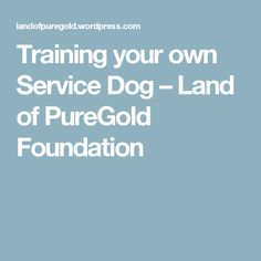 Training your own Service Dog – Land of PureGold Foundation