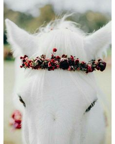 "La unike novias by gisele on Instagram: ""Nos encanta estar Sín parar, ni un segundo. #nosencanta #wedding #crown #Red #whiteandred #caballoblanco #horse #pinterest"""