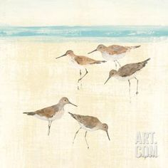Sand Pipers Square II Art Print by Avery Tillmon at Art.com