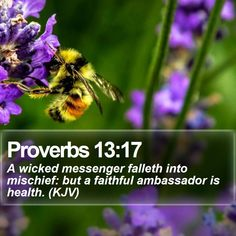 Proverbs 13:17   A wicked messenger falleth into mischief: but a faithful ambassador is health. (KJV)   #Evangelism #Scripture #Sunset #Life #TrustJesus #JesusIsLord   http://www.bible-sms.com/