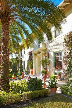 Celebrate the showhouse's anniversary at a new venue with breathtaking intracoastal water views Palm Beach Decor, West Palm Beach, Laguna Beach, Newport Beach, Traditional Home Magazine, Winter House, Red Cross, Container Plants, Key West