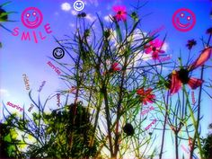 Happy World Smile Day! World Smile Day, Ferris Wheel, Fair Grounds, Happy, Plants, Ser Feliz, Plant, Planets, Being Happy