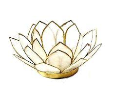 VIT Lotuslykta   värmeljus Tea Light Holder, Tea Lights, Lotus, Decorative Bowls, Shells, Conch Shells, Lotus Flower, Tealight Candle Holders, Tea Light Candles
