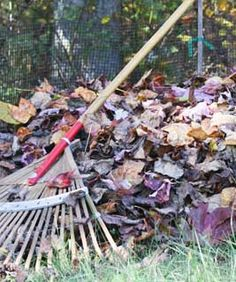 In depth advice about using fallen leaves in your vegetable garden. Find out how you can use the leaves to greatly improve your soil and suppress weed growth. Garden Compost, Garden Soil, Garden Beds, Garden Fun, Green Garden, Composting Methods, Outdoor Gardens, Veggie Gardens, Vegetable Gardening