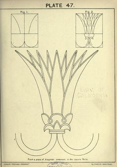 see site for many more - 1895 - Cusack's freehand ornament. A text book with chapters on elements, principles, and methods of freehand drawing, for the general use of teachers and students . by Armstrong, Charles Tangle Patterns, Embroidery Patterns, Art Nouveau, Motif Arabesque, Ancient Egypt Art, Ornament Drawing, Lotus Art, Greek Art, Stencil Painting