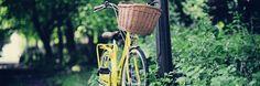 gelb   Das Hollandrad- Kultiges Fahrrad für Stadt und Land