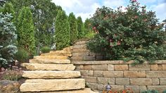 A natural slate staircase ascends between a retaining wall and a row of trees.