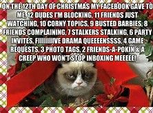 Grumpy Cat Christmas - Bing Images