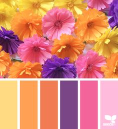 Design Seeds + Color Atlas by Archroma® Color Schemes Colour Palettes, Colour Pallette, Color Palate, Color Combos, Design Seeds, Color Swatches, Color Stories, Color Theory, Pantone