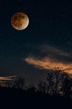 Blood Moon by Reynaldo De La Vega - . - Blood Moon by Reynaldo De La Vega Blood Moon by Reynaldo De La Vega - Moon Photos, Moon Pictures, Night Pictures, Moon Pics, Beautiful Moon, Beautiful Places, Under The Same Moon, Skier, Espanto