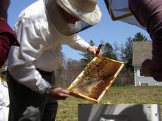 Essex County Beekeepers Association   Beekeeping Course, 2008