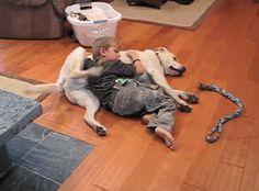 Cuando este niño y su perro fueron, literalmente, el perfecto ejemplo de una relación simbiótica… | 20 ocasiones en las que el trabajo en equipo salvó el día