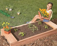 Template - kid sized garden beds with benches - perfect timing, been thinking up plans so that the kids can have their own separate garden.  :)