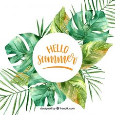 Hello summer background with leaves in watercolor style Free Vector