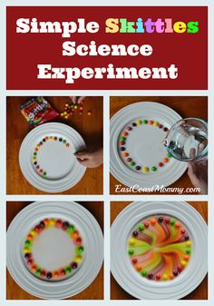 East Coast Mommy: Simple Skittles Science Experiment - Diy and crafts interests Science Crafts, Easy Science Experiments, Science Party, Science Fair Projects, Science For Kids, Projects For Kids, Crafts For Kids, Diy Projects, Simple Science Projects
