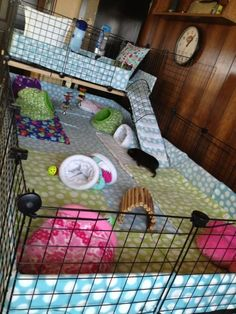Buy The Right Size Guinea Pig Cage. Photo by maskarade Purchasing a guinea pig cage in a pet shop is unfortunately a good way to ensure that it is in fact too small for your pet's needs. Diy Guinea Pig Cage, Guinea Pig Hutch, Guinea Pig House, Pet Guinea Pigs, Guinea Pig Care, Pet Pigs, Bunny Cages, Rabbit Cages, Hamsters