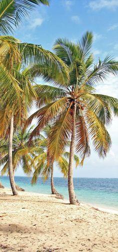 Beautiful beach in Punta Cana   7 Reasons Why You Should Visit Punta Cana