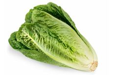 🆕 | News | Public Health Notice – Outbreak of E. coli infections linked to romaine lettuce: There are now a total of 40 cases of E.… #News_