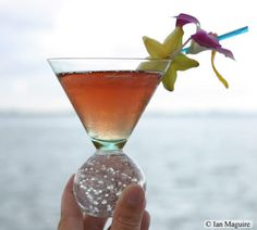 2nd place winner of the Tropical Fruit Drinks Contest - Star Martini - Lapidus Lounge at Ritz-Carlton, South Beach, FL - By: Evan Maccomber