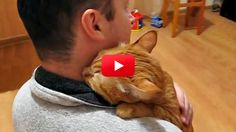 Most cats like to cuddle, but not every cat likes to give hugs like this snuggly guy. See how happy he looks in the video!