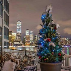 The view from The Pier Apartments, Jersey City <3 Photo: Cole Ippoliti @colecoldwater