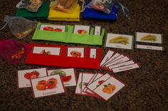 Fruit and Vegetable Montessori 3-part Cards with by TheLaminatrix
