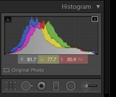 How to Correct Skin Tones in Lightroom | Pretty Presets for Lightroom