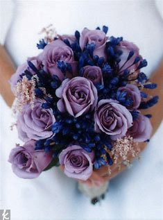 ocean song roses and blue agapanthus