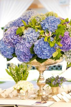 One of my all time favourites would have to be a classic, elegant, hydrangea bouquet. Love these 11 hydrangea-season wedding flower arrangements to die for! Blue Hydrangea Wedding, Hydrangea Not Blooming, Wedding Flowers, Floral Centerpieces, Wedding Centerpieces, Floral Arrangements, Centerpiece Ideas, Tall Centerpiece, Centrepieces