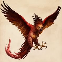 Fantastic Beasts Glossary– Phoenix