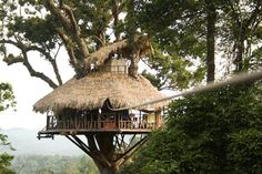 Laos, a jungle trek into the Bokeo Reserve, spend three days ziplining from treehouse to treehouse. Sleep up in the canopy and every morning and evening meals come zipping in.
