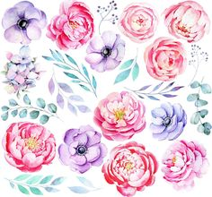 Baby Girl Clipart, Baby Shower Clipart, Baby Animal Costumes, Watercolor Cake, Unicorn Invitations, Pink And Purple Flowers, Baby Clip Art, Anemones, Peony Flower