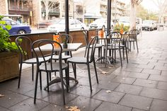 Crave 443– Adelaide   Concept Collections   Barca chair in grey. Contemporary Chairs, Modern Dining Chairs, Outdoor Chairs, Lobby Lounge, Beer Garden, Bar Stools, Cravings, Indoor, Restaurant