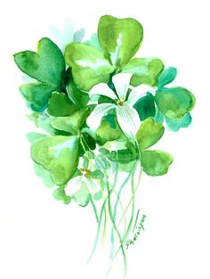Shamrock St PAtricks Flower original watercolor painting 12 X 9 in