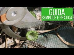 POTATURA ZUCCHINE: come e perchè farla - YouTube Garden, Outdoor Decor, Terrazzo, Youtube, Permaculture, Garten, Lawn And Garden, Gardens, Gardening