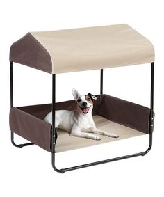 Another great find on #zulily! Pet Canopy Bed #zulilyfinds my babies NEED this