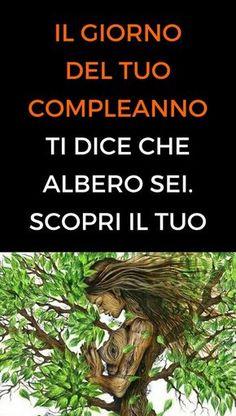 #giornocompleanno #albero #consapevolezza #animanaturale