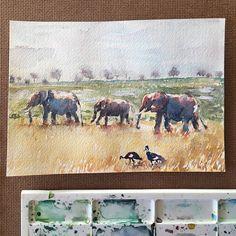 Original Watercolor Elephant Painting watercolor landscape