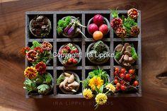 View Lightbox Image | Danielle Harrity