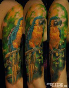 parrot tattoo by den