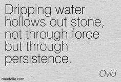 TOBIAS WOLFF QUOTE PERSISTENCE buzzquotes.com