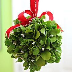 Overview, Christmas Decorations: How to Make a Kissing Ball