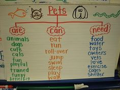Pet anchor chart