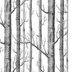 Birch Tree Wallpaper Modern Black White Woods Forest Wallpaper 20.8 x 393.7 Q