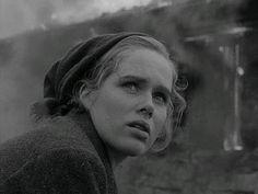Shame, Ingmar Bergman, Liv Ullmann