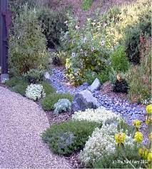 Wisdom From The Garden: Xeriscaping, A Smile & A Handshake – Flowers Gone Wild Blog Natural Landscaping, Country Landscaping, Modern Landscaping, Front Yard Landscaping, Backyard Planters, Backyard Walkway, Drought Resistant Plants, Drought Tolerant, Greek Garden