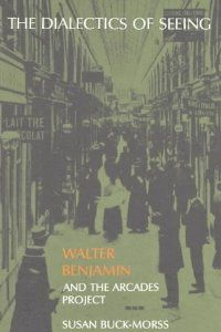 The Dialectics of Seeing: Walter Benjamin and the Arcades Project (Studies in Contemporary German Social Thought): Susan Buck-Morss