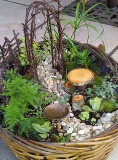 Merveilleux How To Create A Fairy Garden