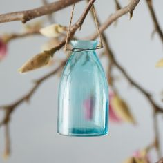 Hanging Bubble Bud Vase ($10) ❤ liked on Polyvore featuring home, home decor, vases, teal, teal vase, teal home decor, outdoor home decor, outside home decor and bubble vase