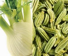 Health is Wealth: The health benefits of fennel